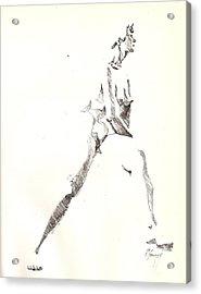 Nude 6 Acrylic Print