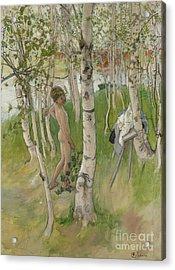 Nude Boy Among Birches Acrylic Print
