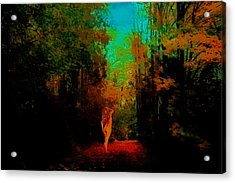Nude In The Forest Acrylic Print by Jeff Burgess