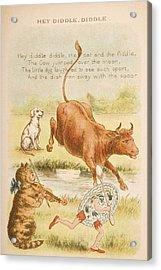 Nursery Rhyme And Illustration Of Hey Acrylic Print