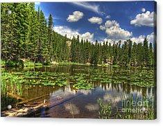 Nymph Lake 2 Acrylic Print