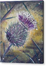 O' Flower Of Scotland Acrylic Print
