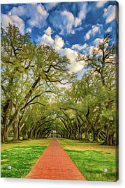 Oak Alley 7 - Paint Acrylic Print