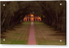 Oak Alley Plantation Acrylic Print by Jonas Wingfield
