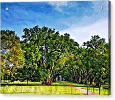Oak Alley Plantation Acrylic Print by Steve Harrington