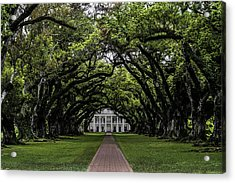 Oak Alley Plantation, Vacherie, Louisiana Acrylic Print