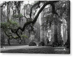 Oak Limb At Old Sheldon Church Acrylic Print