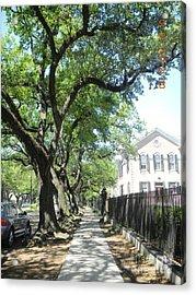 Oak-lined Sidewalk Acrylic Print