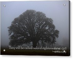 Oak Of Righteousness Acrylic Print