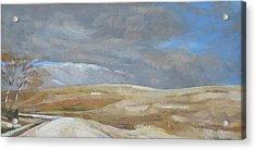 Oak Savanna, Fall Storm Acrylic Print