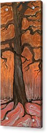 Oak Tree In The Fall Acrylic Print by Anna Folkartanna Maciejewska-Dyba
