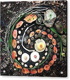 Oakdale Acrylic Print by Jeni Morris