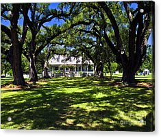 Acrylic Print featuring the photograph Oakland Plantation One by Ken Frischkorn