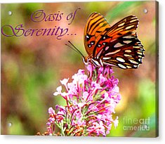 Oasis Of Serenity Acrylic Print by Gardening Perfection