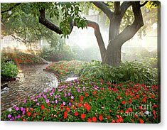 Acrylic Print featuring the photograph Oasis by Susan Cole Kelly