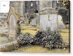 Oblivion. Ivy And Golden Lichen Acrylic Print