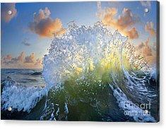 Ocean Bouquet  -  Part 3 Of 3 Acrylic Print