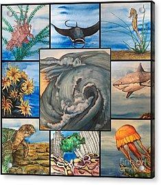 Ocean Collage #1 Acrylic Print