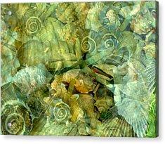 Ocean Gems Underwater Acrylic Print