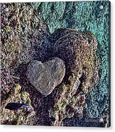 Ocean Love Acrylic Print