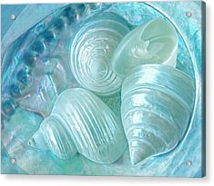 Ocean Pearl Treasure Acrylic Print by Gill Billington