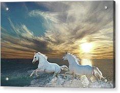 Ocean Play Acrylic Print