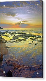 Acrylic Print featuring the photograph Ocean Puddles At Sunset On Molokai by Tara Turner