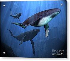 Ocean Ruins Acrylic Print by Corey Ford