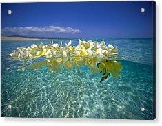 Ocean Surface Acrylic Print