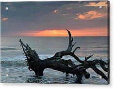Ocean Treescape At Sunrise Acrylic Print by Bruce Gourley