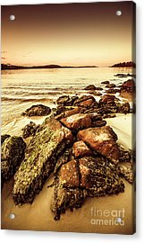 Oceanic Harmony Acrylic Print