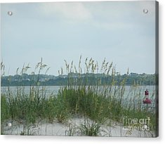 Oceanview Through Seaoats Acrylic Print by Barb Montanye Meseroll