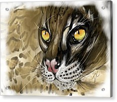 Acrylic Print featuring the digital art Ocelot by Darren Cannell