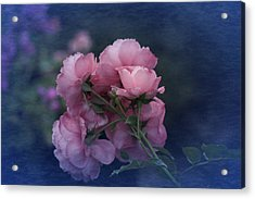 Acrylic Print featuring the photograph October 2016 Roses No. 2 by Richard Cummings