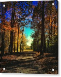 October At The Nature Preserve Acrylic Print