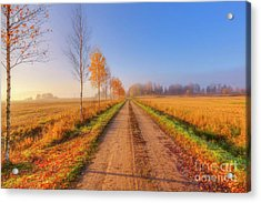 October Countryside 4 Acrylic Print