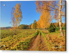 October Countryside 6 Acrylic Print