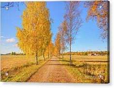 October Countryside Acrylic Print