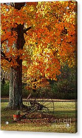 Acrylic Print featuring the drawing October Day by Diane E Berry