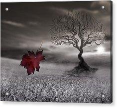 October Fades Acrylic Print