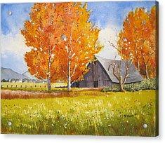 October Flame Acrylic Print by Shirley Braithwaite Hunt