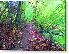 October Forest Pathway Acrylic Print