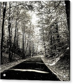Acrylic Print featuring the photograph October Grayscale  by Kendall McKernon