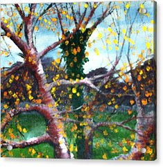 October In Leitrim Acrylic Print by Jean Davies