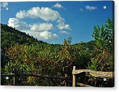 October In The Smokeys Acrylic Print by William Jones