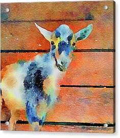 October Kid Acrylic Print by Michele Ross