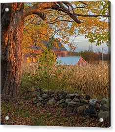 Acrylic Print featuring the photograph October Morning 2016 Square by Bill Wakeley