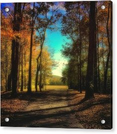 October Path Acrylic Print