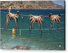 Octopodes Hanging Out Acrylic Print by Happy Home Artistry
