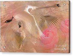 Ode To A Swan 2015 Acrylic Print